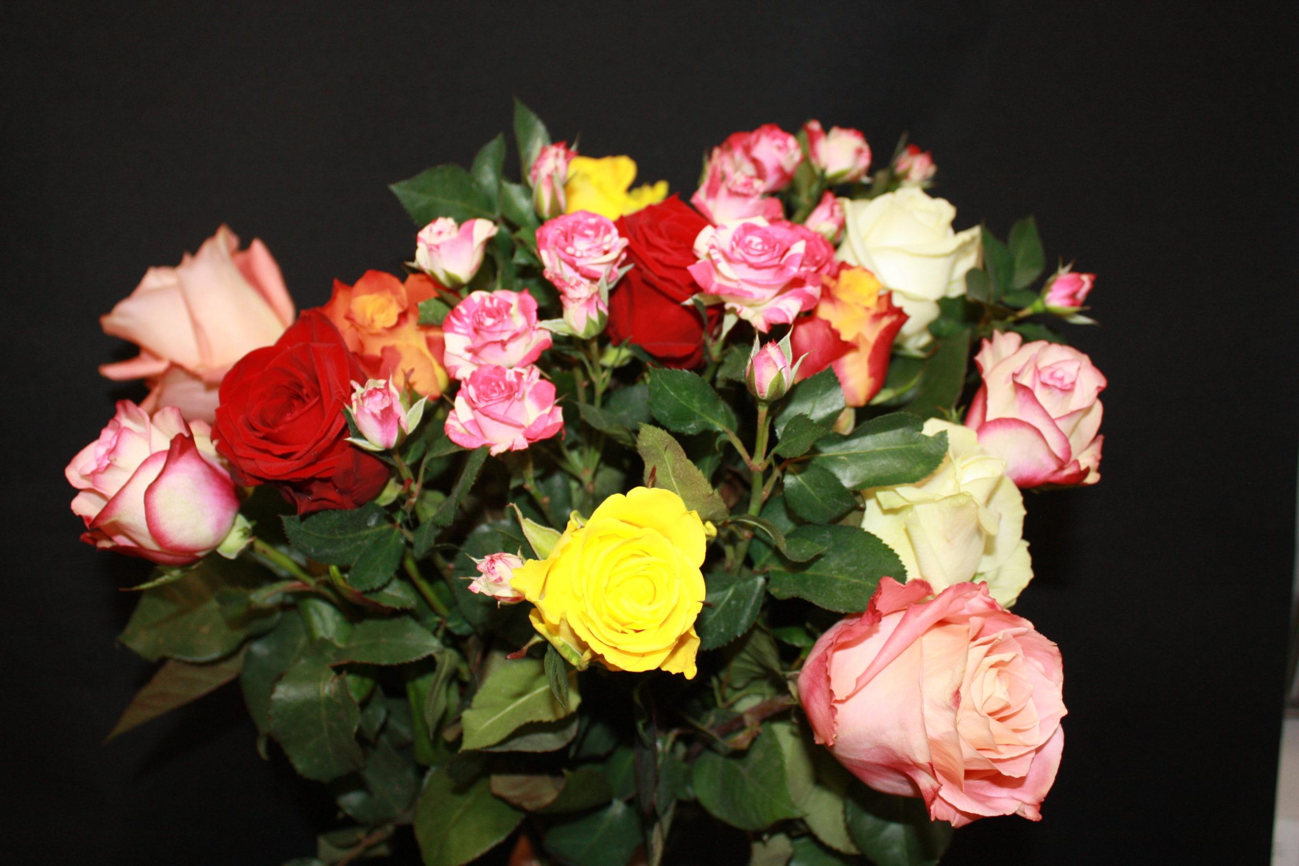 Bouquet de roses multicolore