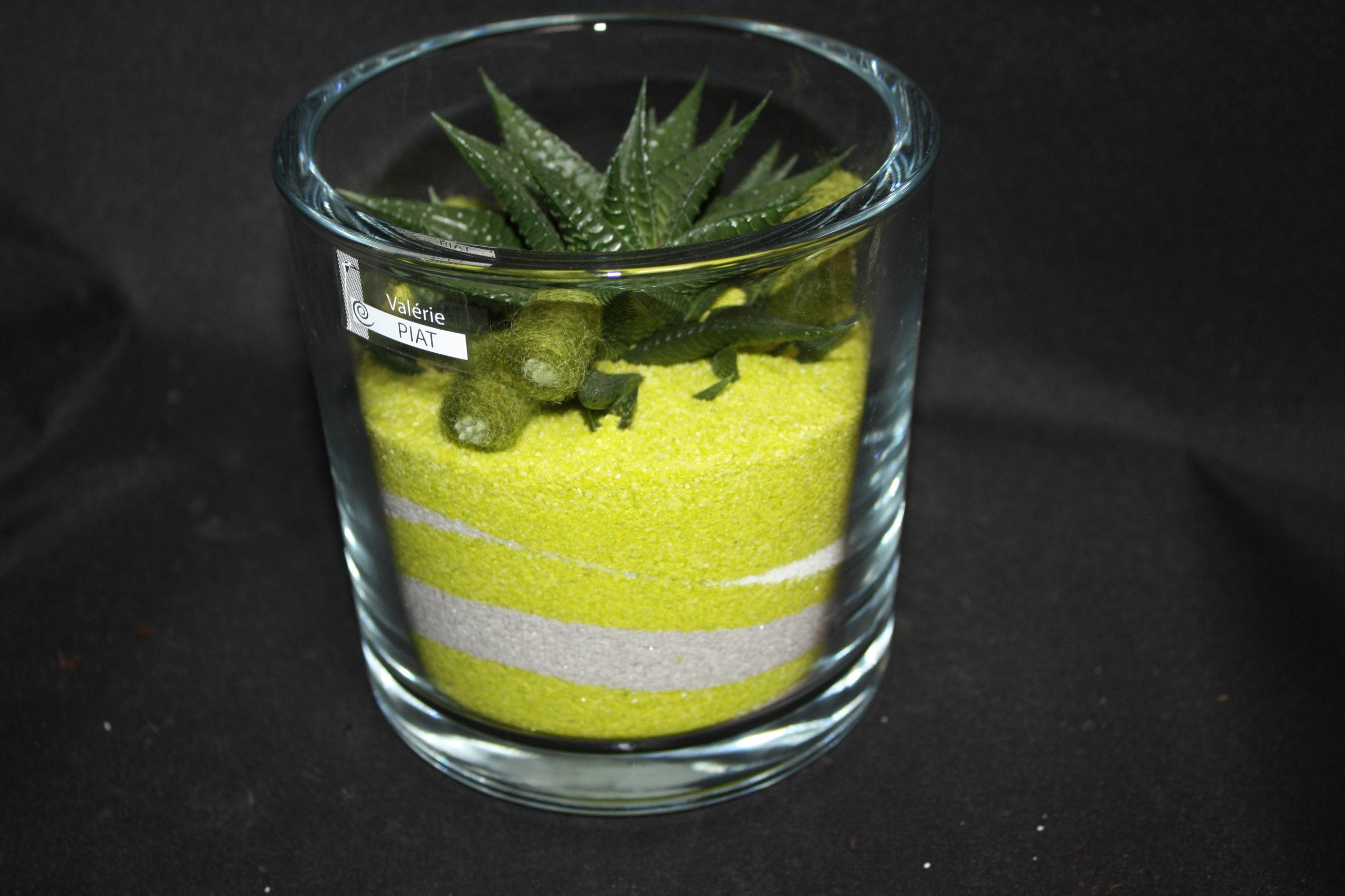 Aloes dans vase de sable vert